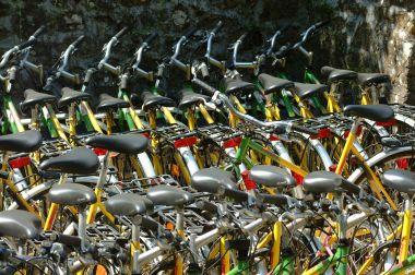 Louer des Vélos