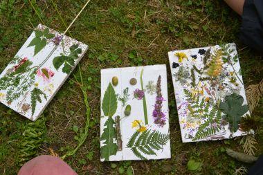 Zelfgemaakt herbarium