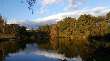Een vijver reflecteert de duizenden prachtige herfstkleuren