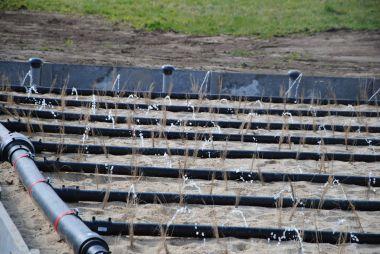 Phyto-épuration assainissement roseaux Périgord Vert
