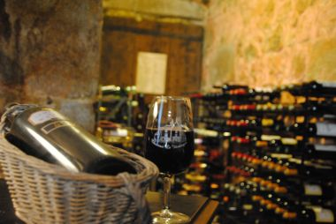 The wine cellar: wines at the good temperature